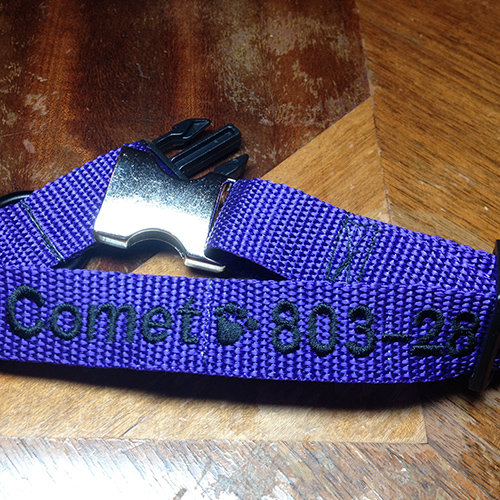 comet-dog-collar-with-name-and-phone-number