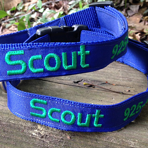 scout-dog-collar